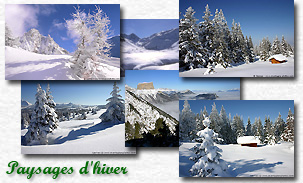 eco_paysages_hiver.jpg